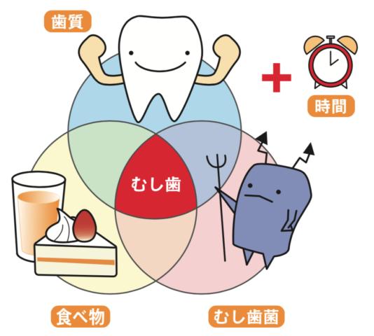 八王子レイス歯科クリニック 歯科衛生士コラム 虫歯の原因と対策 歯質と時間と食べ物と虫歯菌の関係イラスト