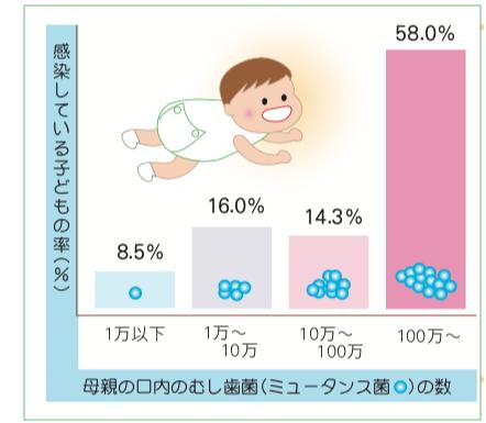 八王子レイス歯科クリニック|歯科衛生士コラム|歯ができるまでと母子感染の予防|母親のミュータンス菌と赤ちゃんの感染の関係グラフ