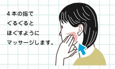 八王子レイス歯科クリニック|歯科衛生士コラム|口腔乾燥について|唾液腺マッサージ2